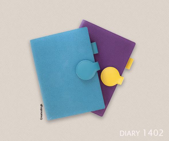 Diary no. DA 1402 , Amazed