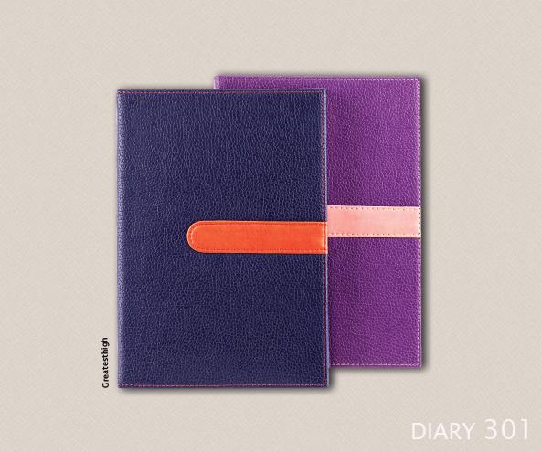 Diary 301