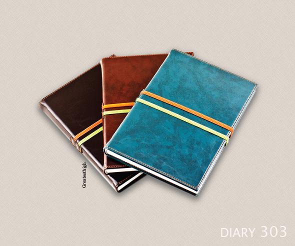 Diary 303